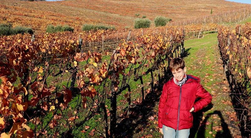 Mejores excursiones desde Oporto