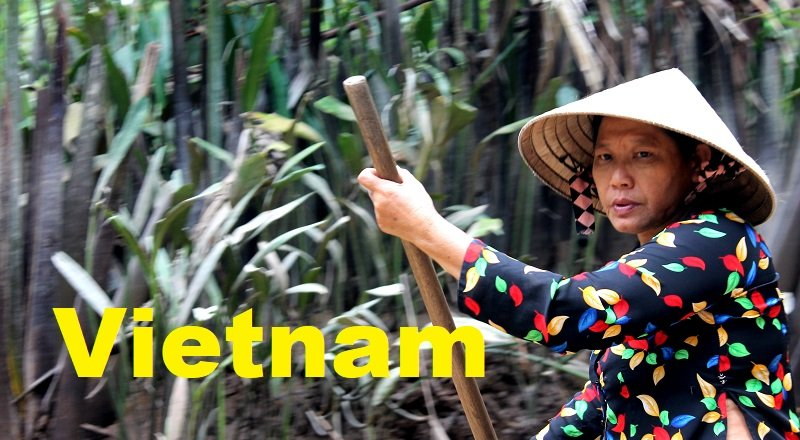 Imprescindibles que ver en Vietnam